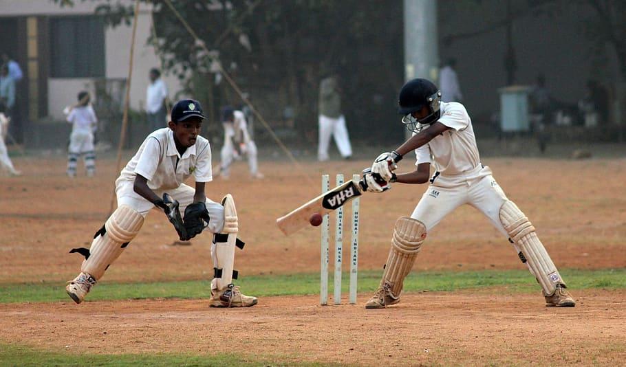 hobby-cricket